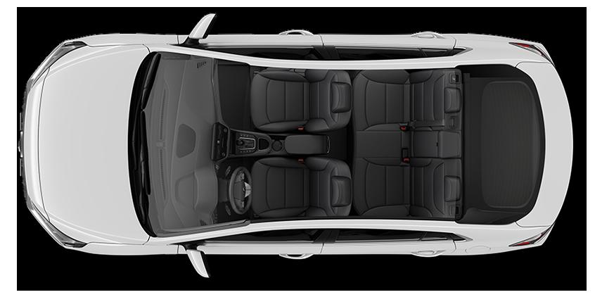 Black seat color